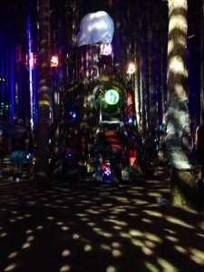 Drugs confirmed as cause of Electric Forest death