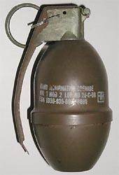 Bomb squad removes live grenade from garage