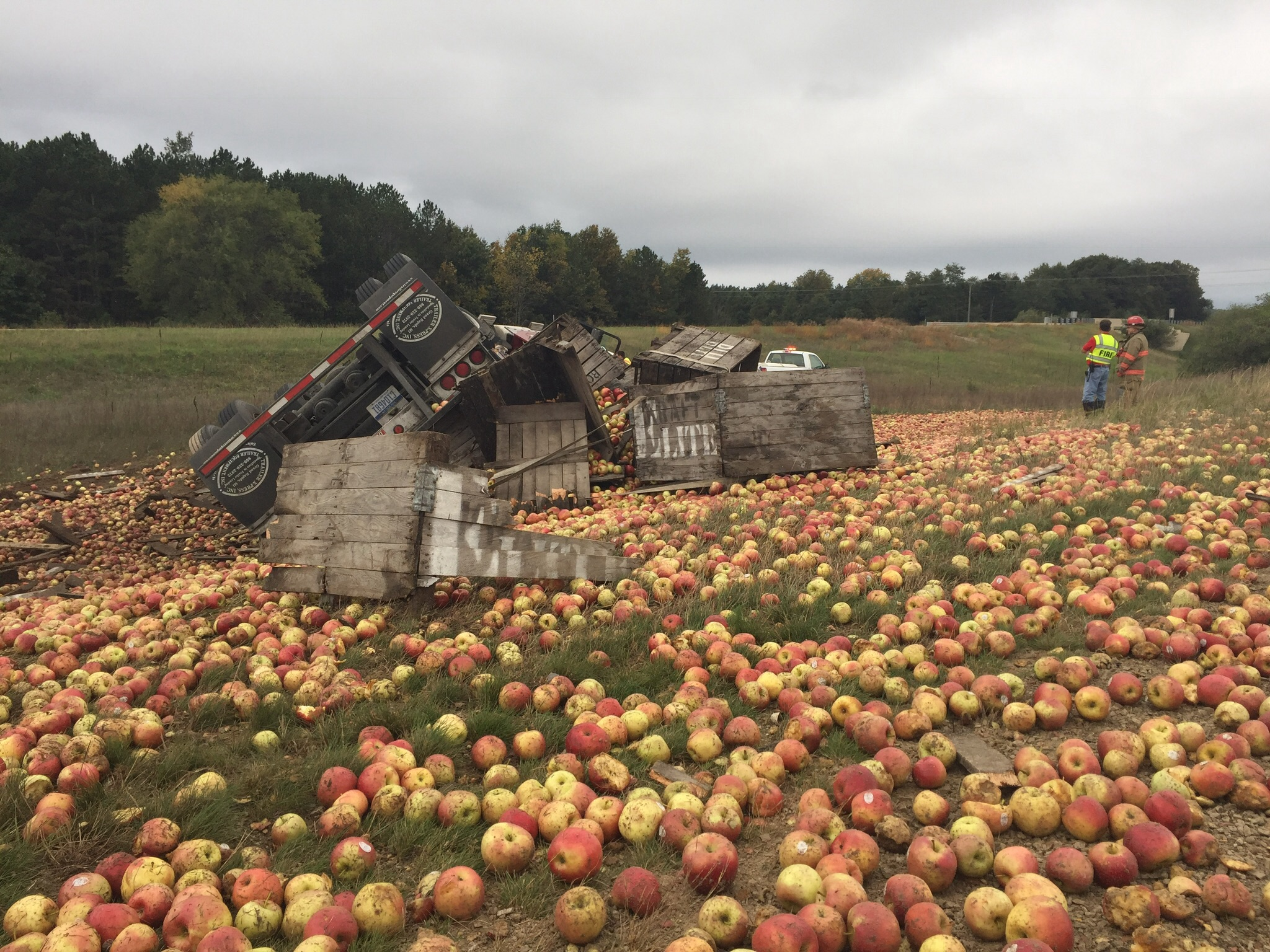 80,000 apples spill when semi rolls over.